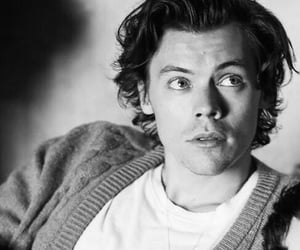 Harry Styles, boy, and harry image