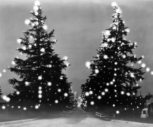 art, christmas trees, and black and white image
