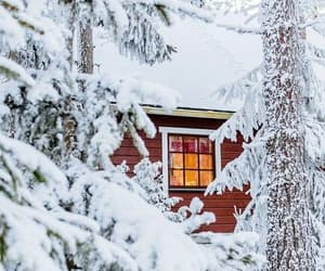 cabin, cold, and frosty image