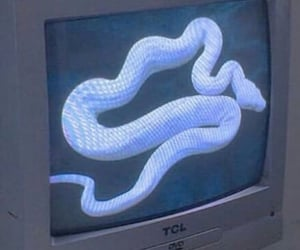 aesthetic, blue, and snake image