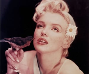 Marilyn Monroe, beauty, and nature image