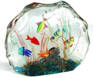 aquarium, glass, and transparent things image