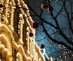beautiful places, boy, and christmas lights image