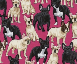 dog, animal, and pattern image