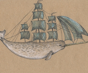 ship and narwhal image