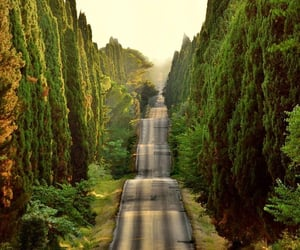 italy, road, and photography image