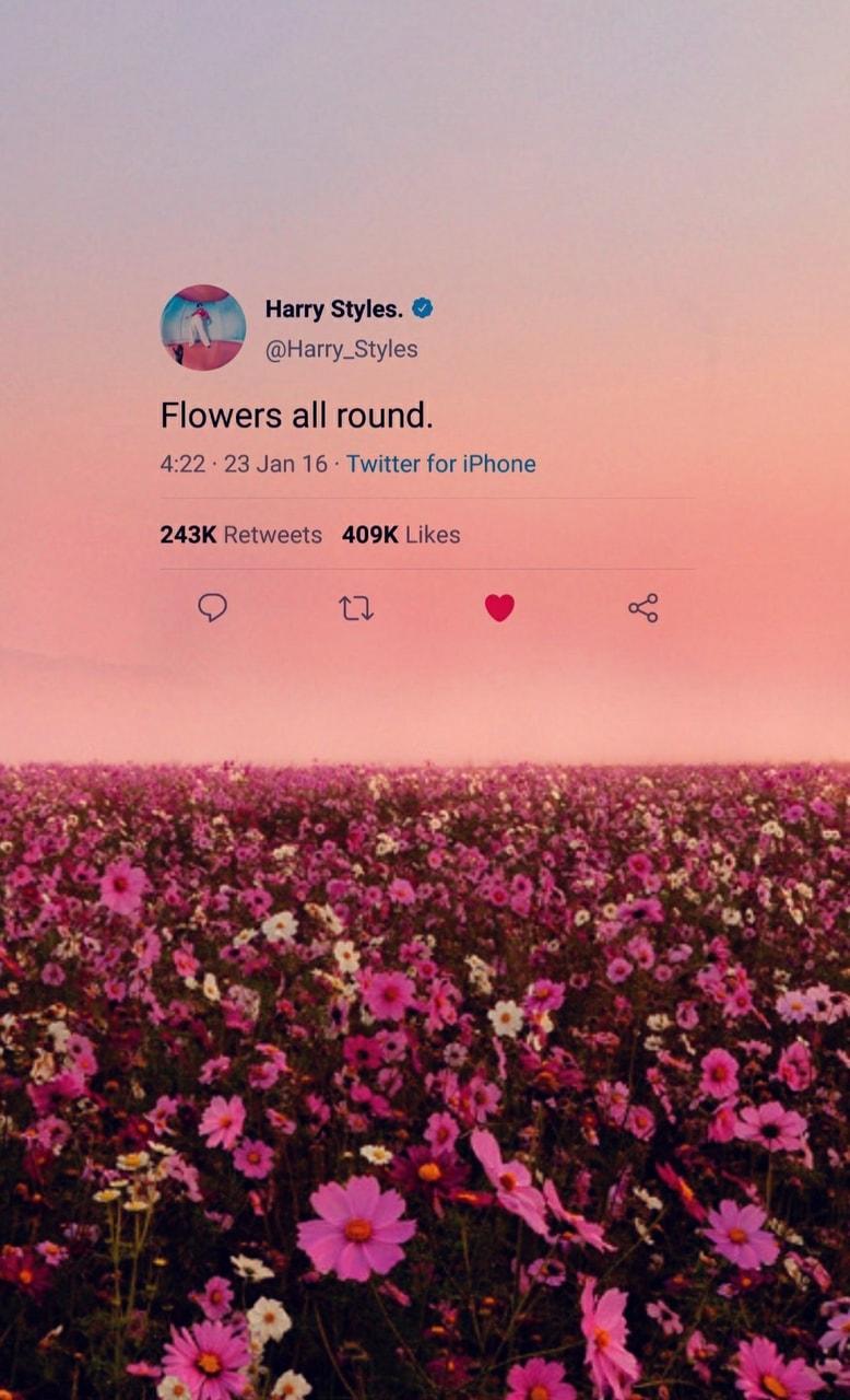Wallpaper Harry Styles Aesthetic