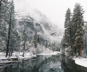 winter, snow, and nature image