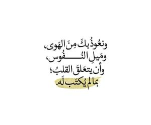 arabic, dz, and مقتبسات image