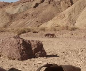 brown, mojave, and desert image