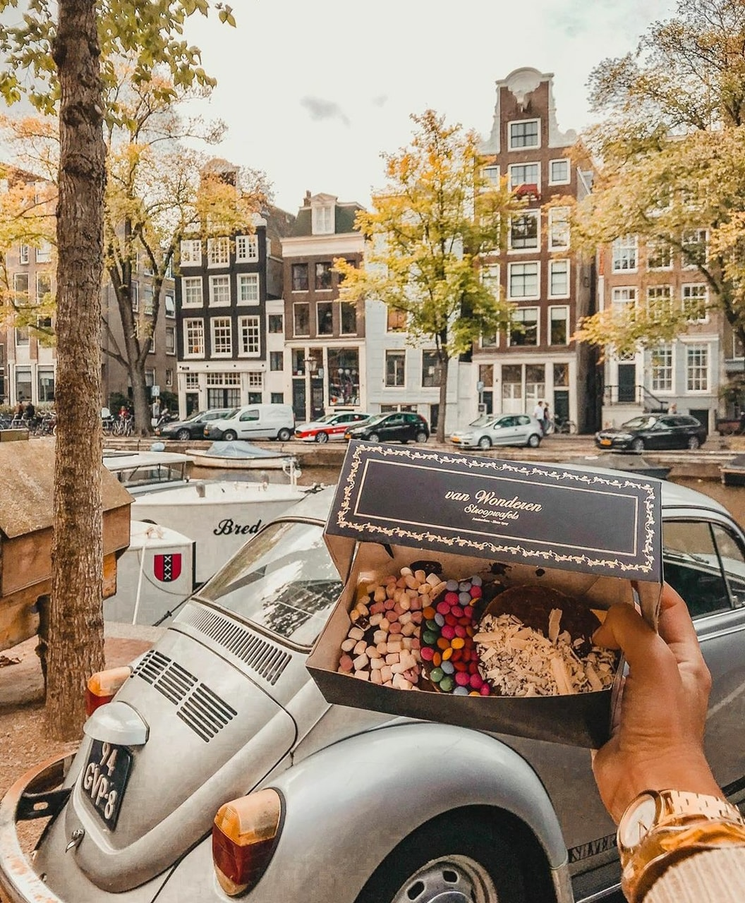 amsterdam, blogger, and Cookies image