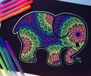 animal, beauty, and colorful image