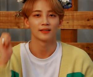 angel, gif, and jeonghan image