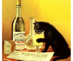 cat, absinthe, and vintage image