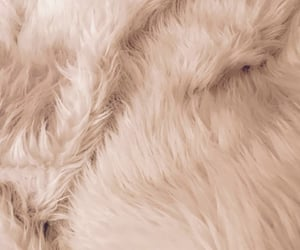 wallpaper, fur, and pink image