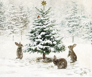 animals, snowing, and bunnies image
