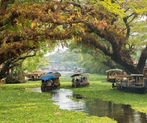 kerala, kerala tour package, and tour package image