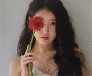 iu, kpop, and 아이유 image