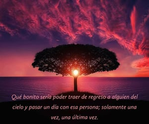 amor, frases, and infinito image