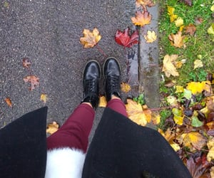 autumn, cold, and colours image