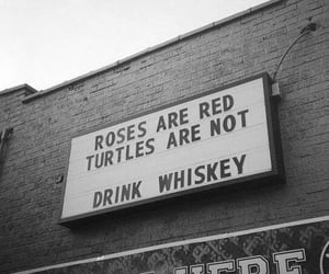 whiskey, grunge, and roses image