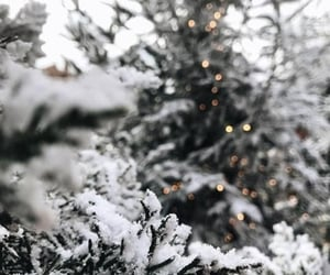 advice, christmas, and aesthetic image