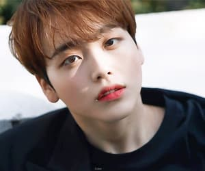 gif, cho seungyoun, and kim wooseok image