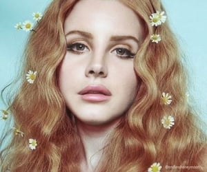 flowers, beauty, and vintage image