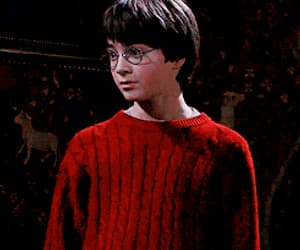 daniel radcliffe, hermione granger, and the sorcerer's stone image