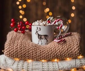 christmas, light, and sweater image