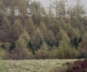 doctor who, nature, and woods image