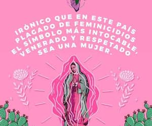 culture, pink, and revolucion image