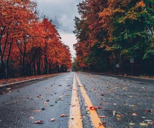 article, autumn, and weather image