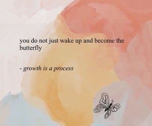 quotes, butterfly, and motivation image