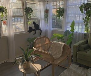 black cats, drapes, and greenery image