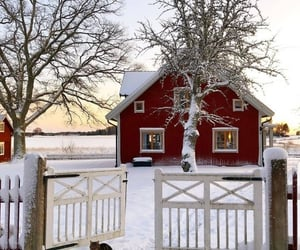 cold, home, and house image
