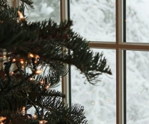 christmas lights, christmas tree, and merry christmas image