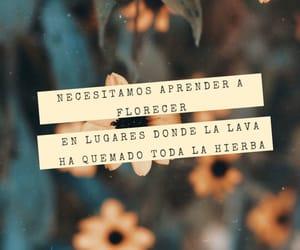 frases en español frases image