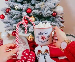 christmas, holiday, and season image