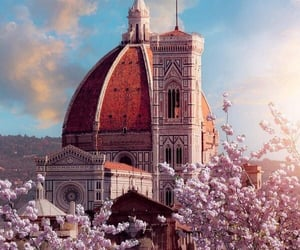 florence, italy, and flowers image