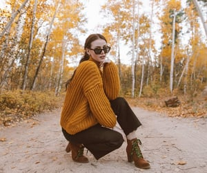 autumn, leaves, and ariat two24 image