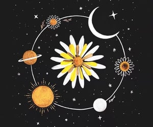 art, flowers, and stars image
