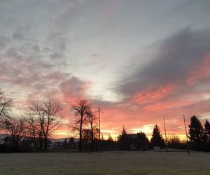 Awakening, frosty, and gratitude image