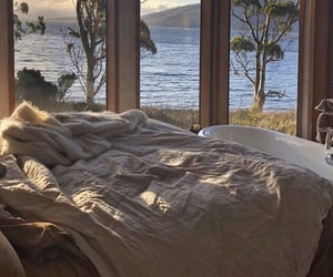 bedroom, nature, and view image