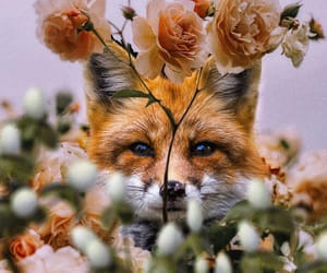 animal, floral, and flower image