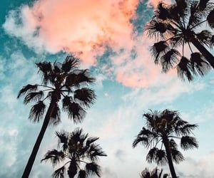 holiday, love, and palms image