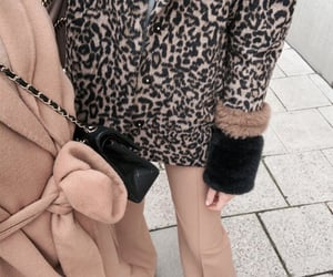 animal print, beige, and camel image