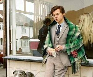 Harry Styles, harry, and 1d image
