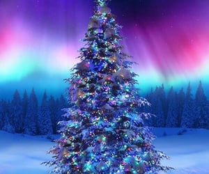 beautiful, christmas tree, and colorful image