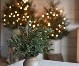 christmas, Christmas time, and christmas decoration image
